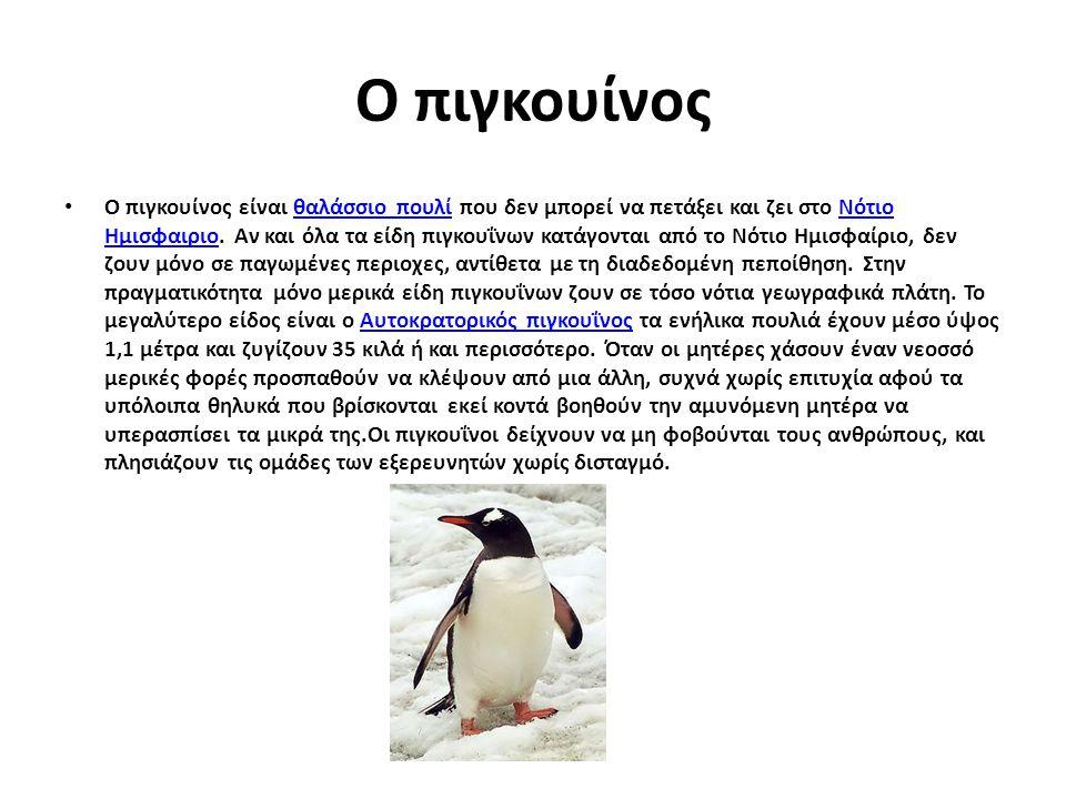 Ο πιγκουίνος Ο πιγκουίνος είναι θαλάσσιο πουλί που δεν μπορεί να πετάξει και ζει στο Νότιο Ημισφαιριο. Αν και όλα τα είδη πιγκουΐνων κατάγονται από το