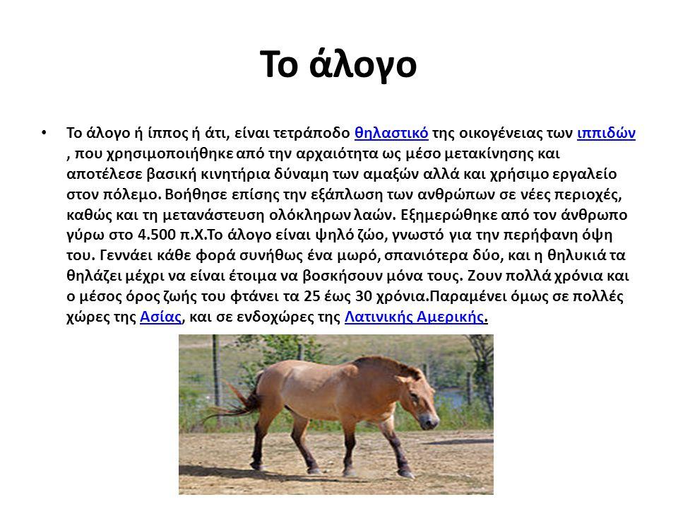 Το άλογο Το άλογο ή ίππος ή άτι, είναι τετράποδο θηλαστικό της οικογένειας των ιππιδών, που χρησιμοποιήθηκε από την αρχαιότητα ως μέσο μετακίνησης και