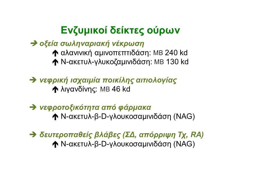 Ενζυμικοί δείκτες ούρων  oξεία σωληναριακή νέκρωση  αλανινική αμινοπεπτιδάση: ΜΒ 240 kd  Ν-ακετυλ-γλυκοζαμινιδάση: ΜΒ 130 kd  νεφρική ισχαιμία ποι