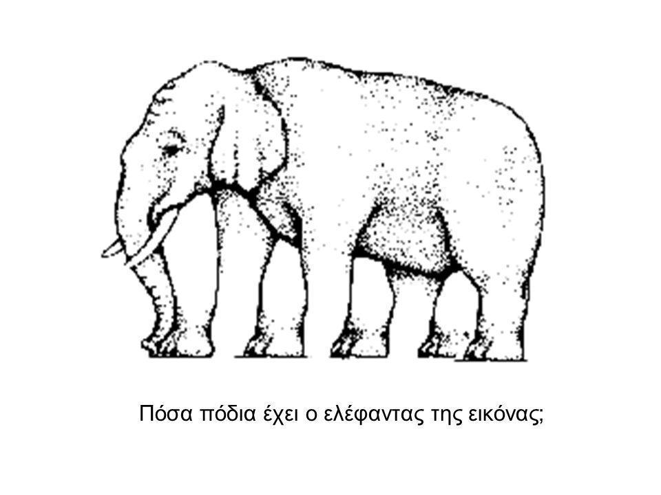 Πόσα πόδια έχει ο ελέφαντας της εικόνας;