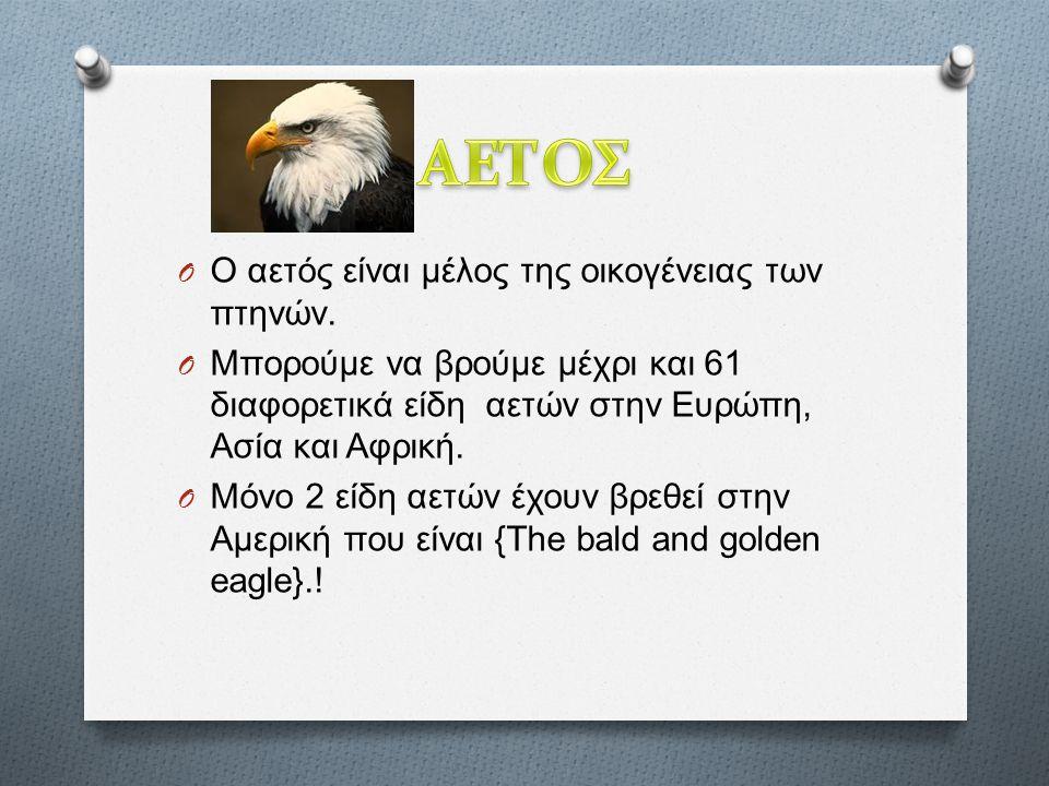 O Ο αετός είναι μέλος της οικογένειας των πτηνών.