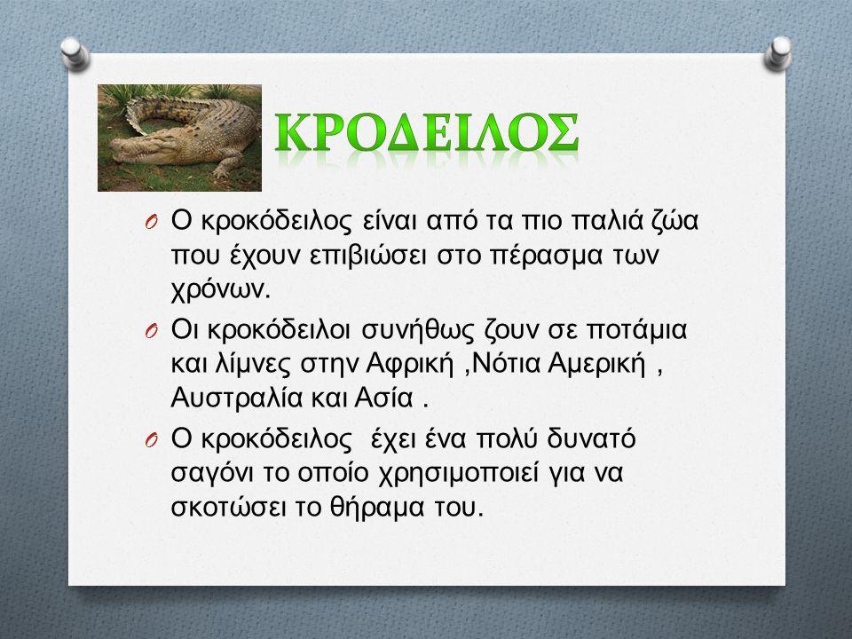 O Ο κροκόδειλος είναι από τα πιο παλιά ζώα που έχουν επιβιώσει στο πέρασμα των χρόνων.
