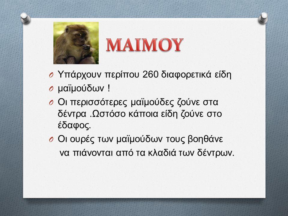 O Υπάρχουν περίπου 260 διαφορετικά είδη O μαϊμούδων .