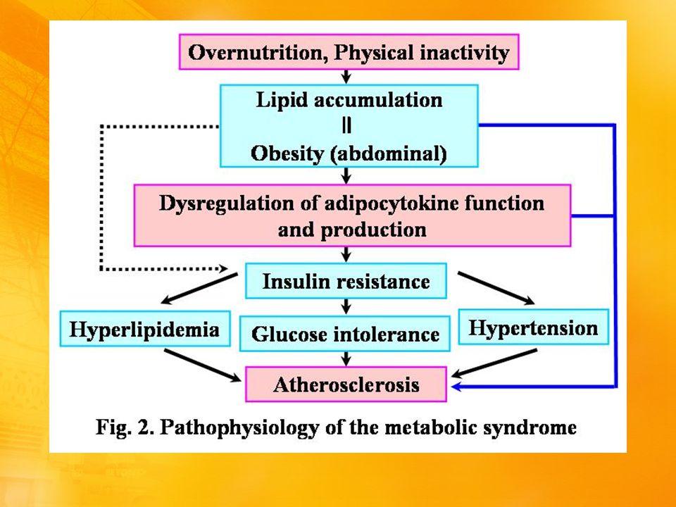 Συμπεράσματα Το μεταβολικό σύνδρομο δεν φαίνεται να επηρεάζει ιδιαίτερα την ρύθμιση του σακχαρώδη διαβήτη.