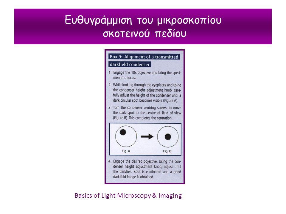Ευθυγράμμιση του μικροσκοπίου σκοτεινού πεδίου Basics of Light Microscopy & Imaging