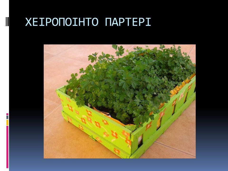 ΣΚΟΡΔΟ - ΚΡΕΜΜΥΔΙ  Σκόρδο (σκελίδες) – Κρεμμύδι (κοκκάρι)  Σκόρδο: όχι πολυ υγρασία, να στραγγίζει το έδαφος.