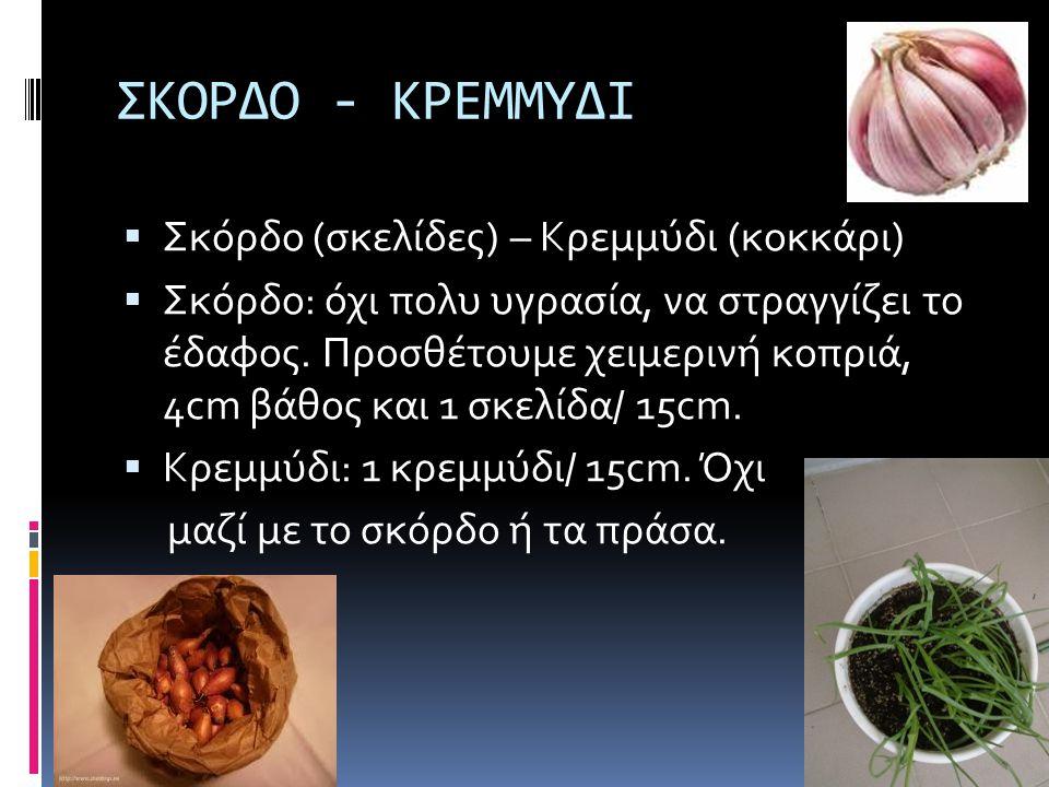 ΣΠΑΝΑΚΙ - ΡΟΚΑ  Σπανάκι, ρόκα: φυτεύουμε σπόρο σε ζαρντινιέρα.Προσθέτουμε καλά χωνεμένη κοπριά.