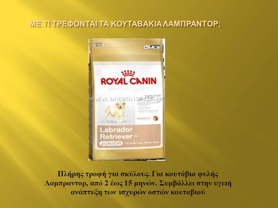 Πλήρης τροφή για σκύλους.Για κουτάβια φυλής Λαμπραντορ, από 2 έως 15 μηνών.