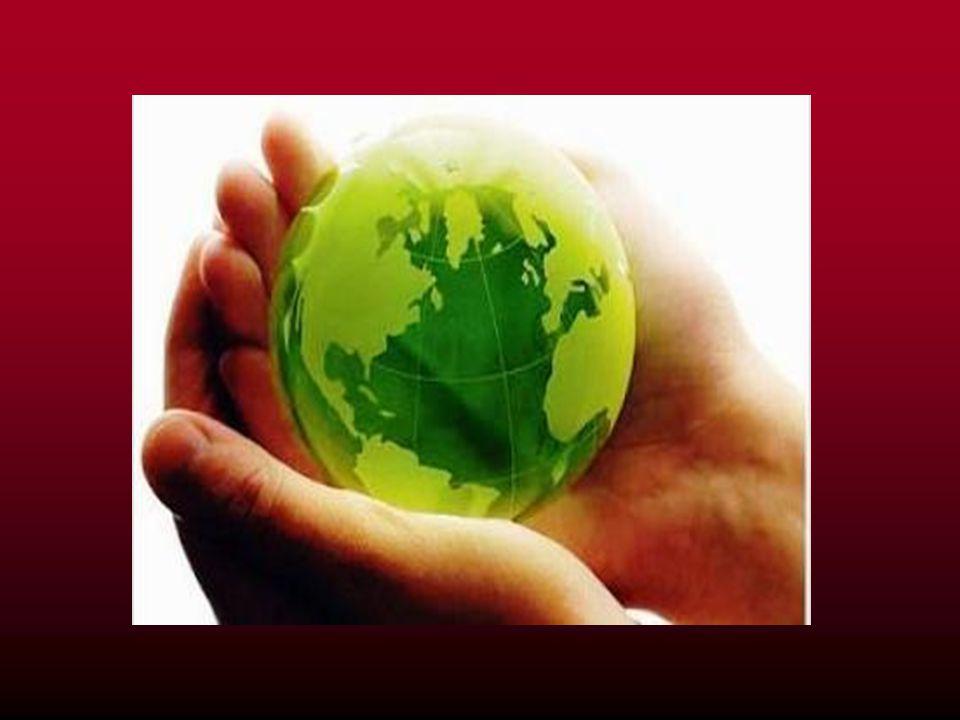 Παγκόσμιος Οργανισμός Εμπορίου Ο Παγκόσμιος Οργανισμός Εμπορίου (ΠΟΕ) συστάθηκε το 1995, ύστερα από ένα μαραθώνιο διαπραγματεύσεων που διεξήχθη μεταξύ διαφόρων κρατών κατά την περίοδο 1986-1994.