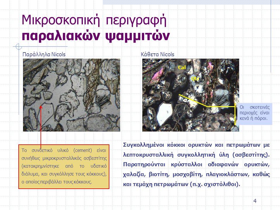 4 Μικροσκοπική περιγραφή παραλιακών ψαμμιτών Παράλληλα NicolsΚάθετα Nicols Το συνδετικό υλικό (cement) είναι συνήθως μικροκρυσταλλικός ασβεστίτης (κατακρημνίστηκε από το υδατικό διάλυμα, και συγκόλλησε τους κόκκους), ο οποίος περιβάλλει τους κόκκους.