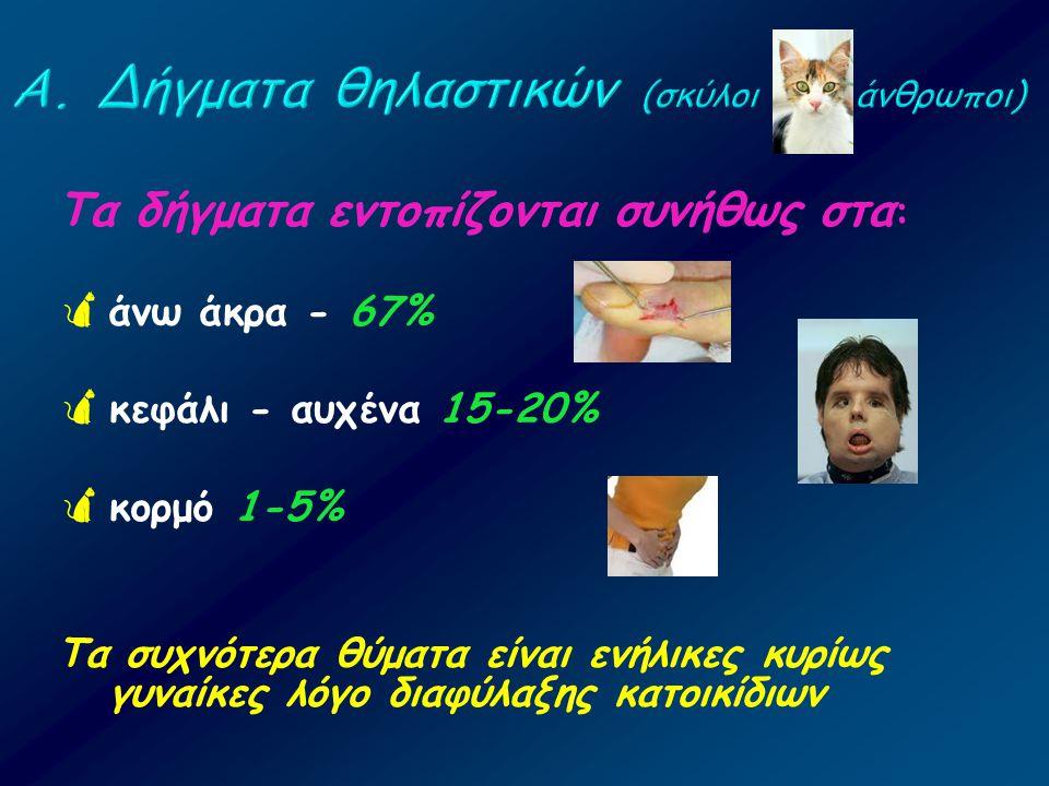 Τα δήγματα εντοπίζονται συνήθως στα :  άνω άκρα - 67%  κεφάλι - αυχένα 15-20%  κορμό 1-5% Τα συχνότερα θύματα είναι ενήλικες κυρίως γυναίκες λόγο δ