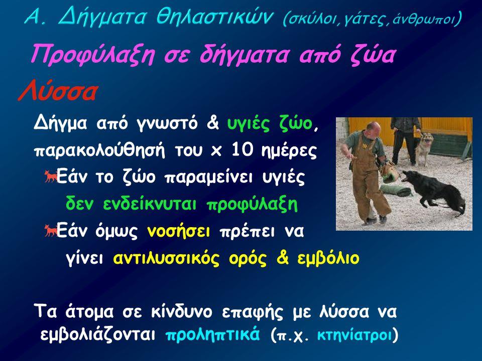 Προφύλαξη σε δήγματα από ζώα Λύσσα Δήγμα από γνωστό & υγιές ζώο, παρακολούθησή του x 10 ημέρες  Εάν το ζώο παραμείνει υγιές δεν ενδείκνυται προφύλαξη