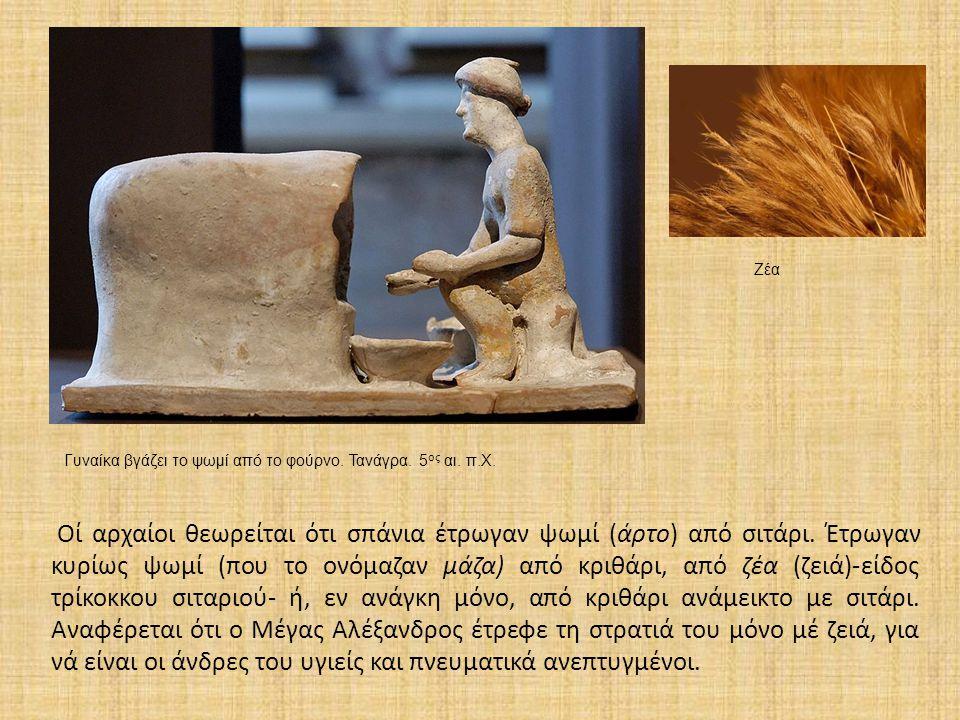 Οί αρχαίοι θεωρείται ότι σπάνια έτρωγαν ψωμί (άρτο) από σιτάρι. Έτρωγαν κυρίως ψωμί (που το ονόμαζαν μάζα) από κριθάρι, από ζέα (ζειά)-είδος τρίκοκκου