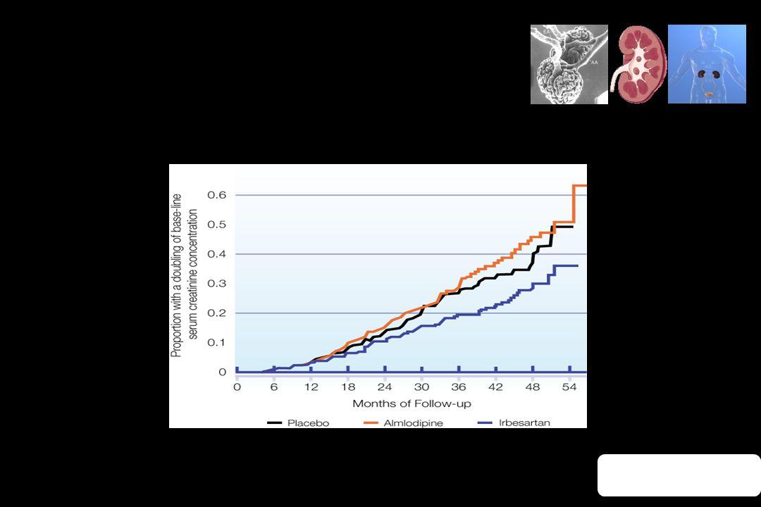 Renin-Angiotensin System Blockade Clinical Evidence Lewis EJ et al., N Engl J Med. 2001;345(12):851–60. IRBESARTAN IN DIABETIC NEPHROPATHY TRIAL (IDNT