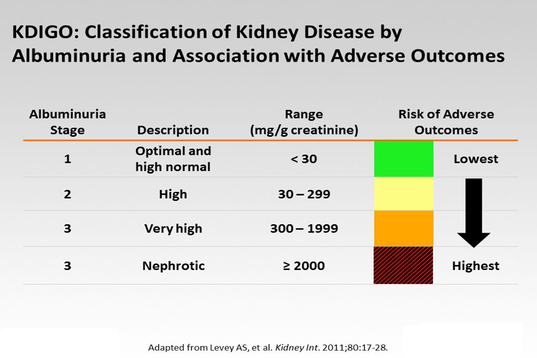 Am J Kidney Dis 2009 CARDS-KIDNEY  N=970 DM PATIENTS WITH eGFR=30-60 mL/min/1.73 m 2  ATORVASTATIN 10 mg vs PLACEBO: 42% REDUCTION IN MAJOR CVD EVENTS + 61% REDUCTION IN STROKE