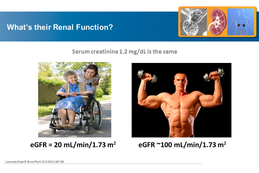 What's their Renal Function.Lisowska-Myjak B. Blood Purif.