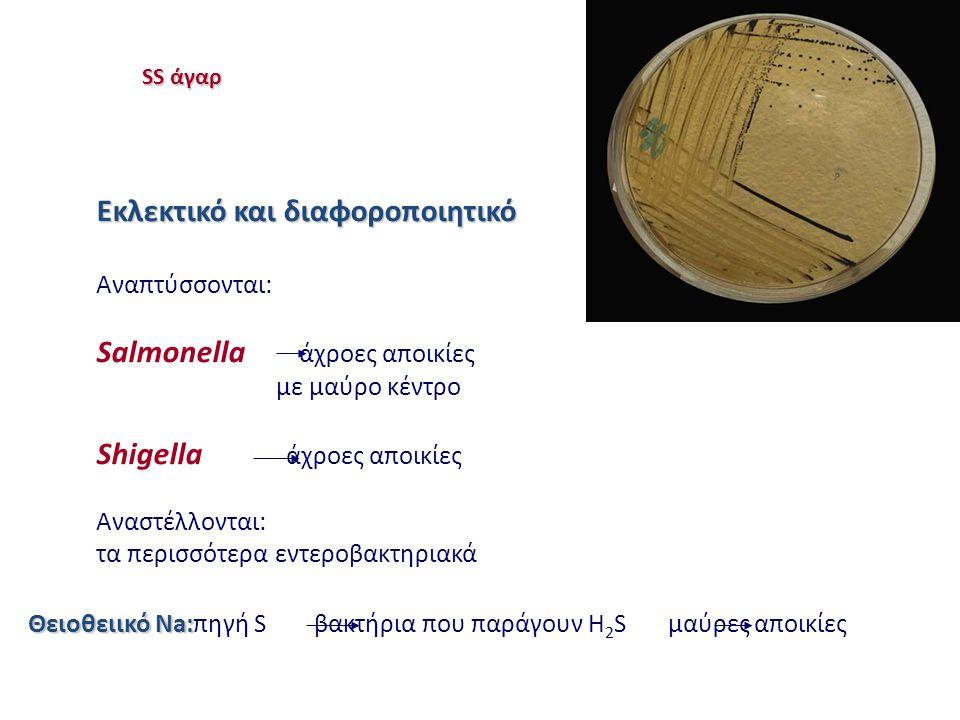 SS άγαρ Εκλεκτικό και διαφοροποιητικό Αναπτύσσονται: Salmonella άχροες αποικίες με μαύρο κέντρο Shigella άχροες αποικίες Αναστέλλονται: τα περισσότερα εντεροβακτηριακά Θειοθειικό Na: Θειοθειικό Na:πηγή S βακτήρια που παράγουν H 2 S μαύρες αποικίες