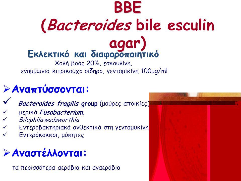 BBE BBE (Bacteroides bile esculin agar) Εκλεκτικό και διαφοροποιητικό Χολή βοός 20%, εσκουλίνη, εναμμώνιο κιτρικούχο σίδηρο, γενταμικίνη 100μg/ml  Aναπτύσσονται: Bacteroides fragilis group (μαύρες αποικίες), μερικά Fusobacterium, Bilophila wadsworthia Εντεροβακτηριακά ανθεκτικά στη γενταμυκίνη, Εντερόκοκκοι, μύκητες  Aναστέλλονται: τα περισσότερα αερόβια και αναερόβια
