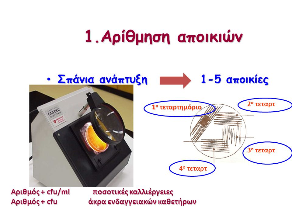 1.Αρίθμηση αποικιών Σπάνια ανάπτυξη Σπάνια ανάπτυξη 1+ ή μικρή 1+ ή μικρή 2+ ή μέτρια 2+ ή μέτρια 3+ ή μεγάλη 3+ ή μεγάλη 4+ ή μεγάλη 4+ ή μεγάλη 1-5 αποικίες 1-5 αποικίες Αριθμός + cfu/ml ποσοτικές καλλιέργειες Αριθμός + cfu άκρα ενδαγγειακών καθετήρων 1 ο τεταρτημόριο 2 ο τεταρτ 3 ο τεταρτ 4 ο τεταρτ