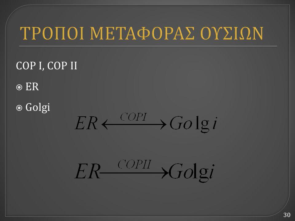 30 ΤΡΟΠΟΙ ΜΕΤΑΦΟΡΑΣ ΟΥΣΙΩΝ COP I, COP II  ER  Golgi