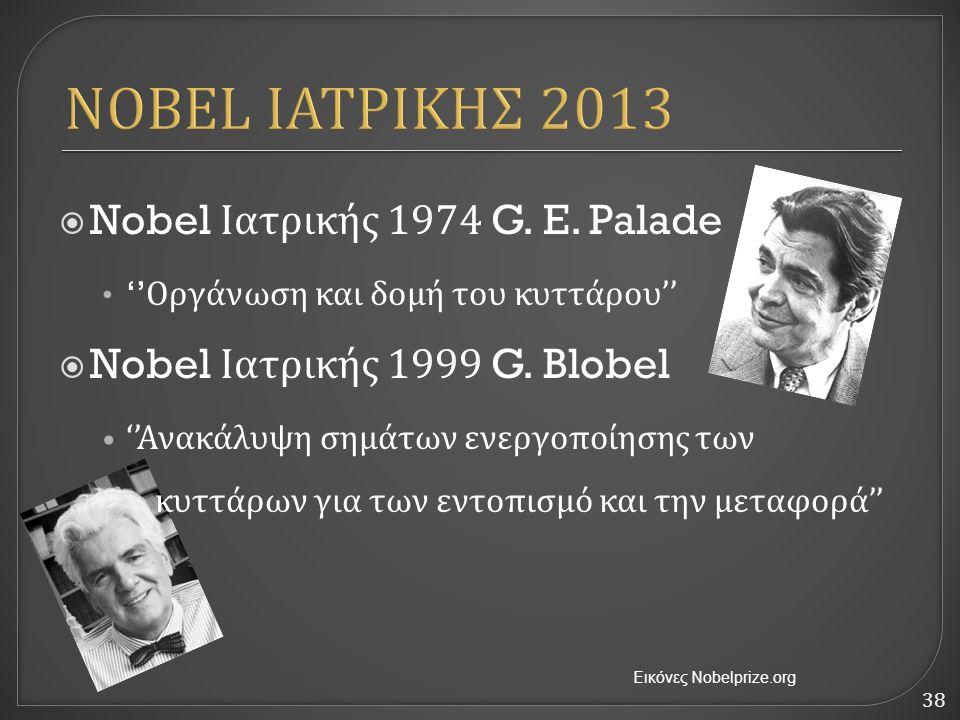 38 NOBEL ΙΑΤΡΙΚΗΣ 2013  Nobel Ιατρικής 1974 G. E. Palade '' Οργάνωση και δομή του κυττάρου ''  Nobel Ιατρικής 1999 G. Blobel '' Ανακάλυψη σημάτων εν