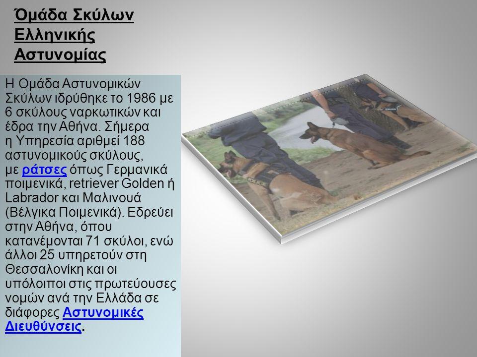 Όμάδα Σκύλων Ελληνικής Αστυνομίας Η Ομάδα Αστυνομικών Σκύλων ιδρύθηκε το 1986 με 6 σκύλους ναρκωτικών και έδρα την Αθήνα. Σήμερα η Υπηρεσία αριθμεί 18