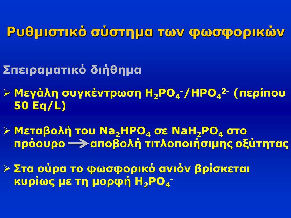 Ρυθμιστικό σύστημα των φωσφορικών Σπειραματικό διήθημα  Μεγάλη συγκέντρωση H 2 PO 4 - /HPO 4 2- (περίπου 50 Eq/L)  Μεταβολή του Na 2 HPO 4 σε NaH 2