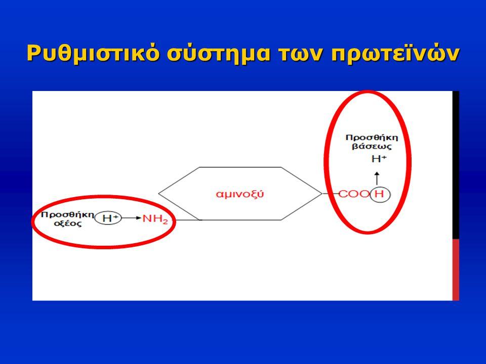 Ρυθμιστικό σύστημα των πρωτεϊνών