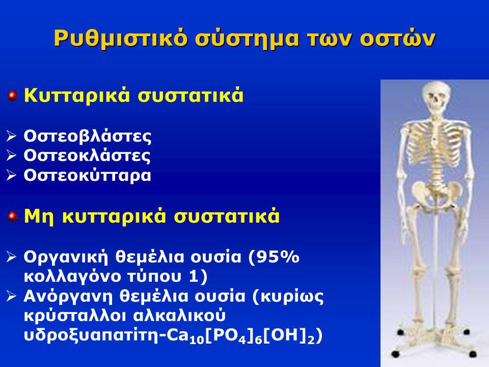 Ρυθμιστικό σύστημα των οστών Κυτταρικά συστατικά  Οστεοβλάστες  Οστεοκλάστες  Οστεοκύτταρα Μη κυτταρικά συστατικά  Οργανική θεμέλια ουσία (95% κολ