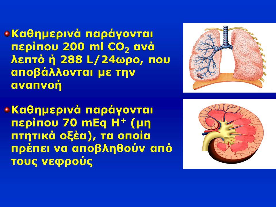 Καθημερινά παράγονται περίπου 200 ml CO 2 ανά λεπτό ή 288 L/24ωρο, που αποβάλλονται με την αναπνοή Καθημερινά παράγονται περίπου 70 mEq H + (μη πτητικ
