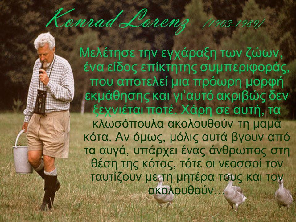 Konrad Lorenz (1903-1989) Μελέτησε την εγχάραξη των ζώων, ένα είδος επίκτητης συμπεριφοράς, που αποτελεί μια πρόωρη μορφή εκμάθησης και γι'αυτό ακριβώ