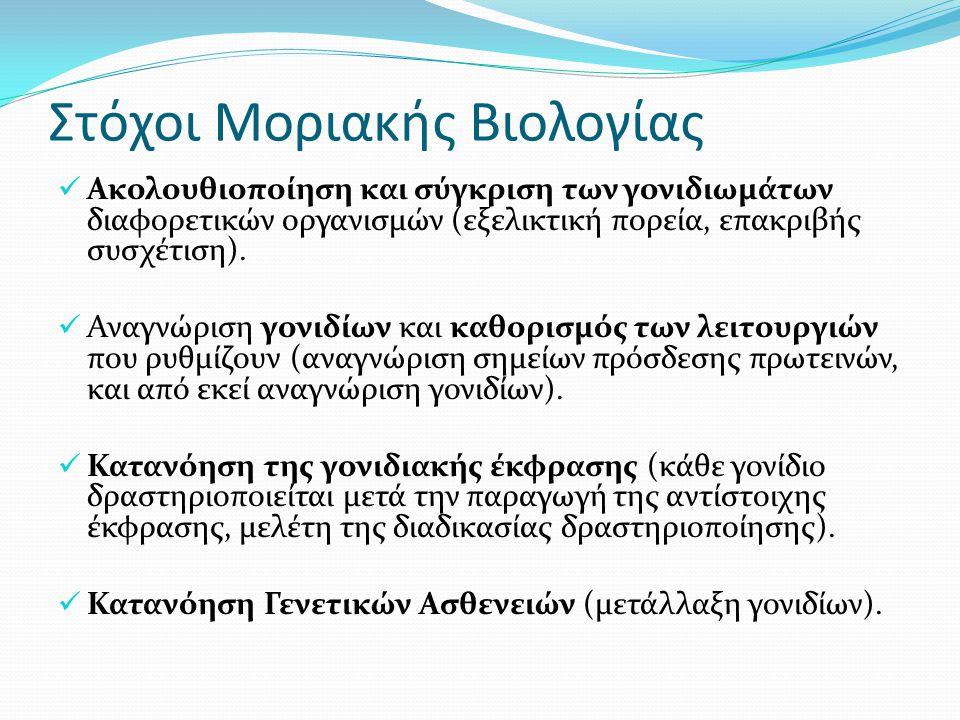 Στόχοι Μοριακής Βιολογίας Ακολουθιοποίηση και σύγκριση των γονιδιωµάτων διαφορετικών οργανισµών (εξελικτική πορεία, επακριβής συσχέτιση). Αναγνώριση γ