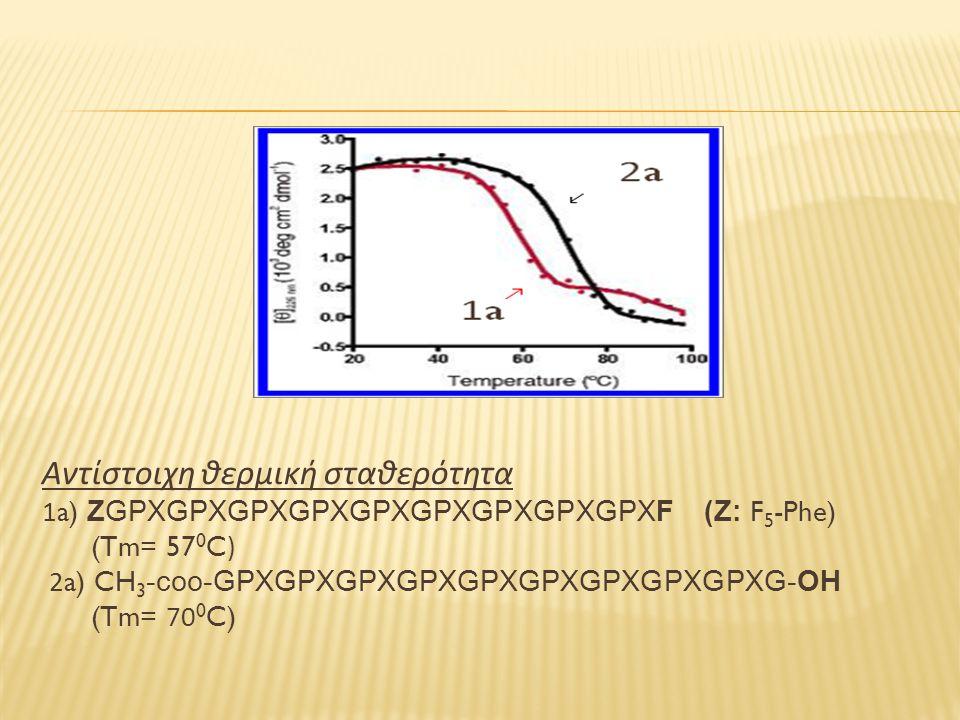 Αντίστοιχη θερμική σταθερότητα 1a) ZGPXGPXGPXGPXGPXGPXGPXGPXGPXF (Z: F 5 -Phe) (Tm= 57 0 C) 2a) CH 3 -coo-GPXGPXGPXGPXGPXGPXGPXGPXGPXG-OH (Tm= 70 0 C)
