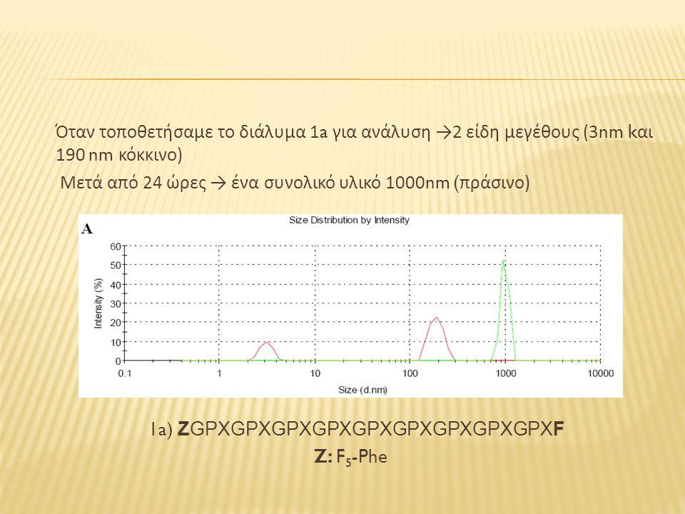 Όταν τοποθετήσαμε το διάλυμα 1a για ανάλυση → 2 είδη μεγέθους (3nm k αι 190 nm κόκκινο ) Μετά από 24 ώρες → ένα συνολικό υλικό 1000nm ( πράσινο ) 1a) ZGPXGPXGPXGPXGPXGPXGPXGPXGPXF Z: F 5 -Phe