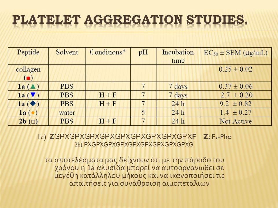 1a) ΖGPXGPXGPXGPXGPXGPXGPXGPXGPXF Z: F 5 -Phe 2b) PXGPXGPXGPXGPXGPXGPXGPXGPXG τα αποτελέσματα μας δείχνουν ότι με την πάροδο του χρόνου η 1a αλυσίδα μπορεί να αυτοοργανωθει σε μεγέθη κατάλληλου μήκους και να ικανοποιήσει τις απαιτήσεις για συνάθροιση αιμοπεταλίων