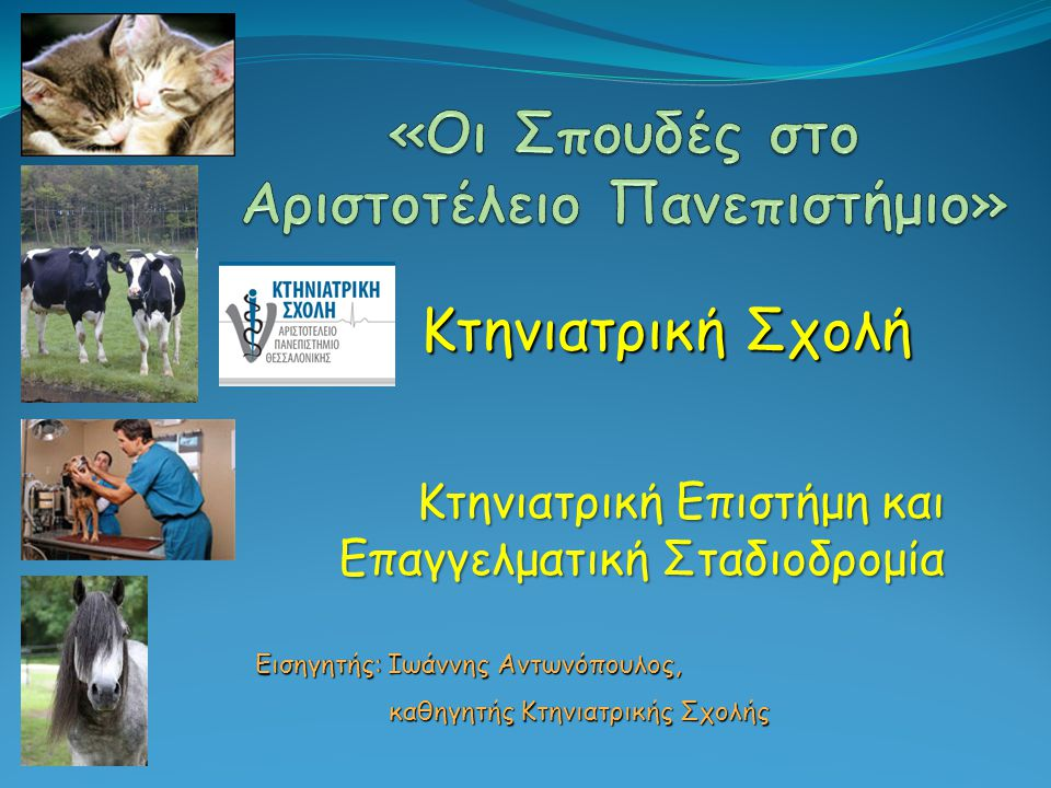Οργάνωση της Κτηνιατρικής Σχολής Τομέας Κλινικών Μικρών και Μεγάλων Ζώων Στον 5ο Τομέα διδάσκονται τα γνωστικά αντικείμενα της κλινικής εξέτασης και διαγνωστικής, της παθολογίας των ζώων συντροφιάς, της χειρουργικής των ζώων συντροφιάς, της αναισθησιολογίας και εντατικής θεραπείας, της απεικονιστικής διαγνωστικής, της παθολογίας και χειρουργικής των παραγωγικών ζώων, της μαιευτικής, της τεχνητής σπερματέγχυσης και παθολογίας αναπαραγωγής των ζώων, της παθολογίας των πτηνών, και της μελισσοκομίας και μελισσοπαθολογίας.