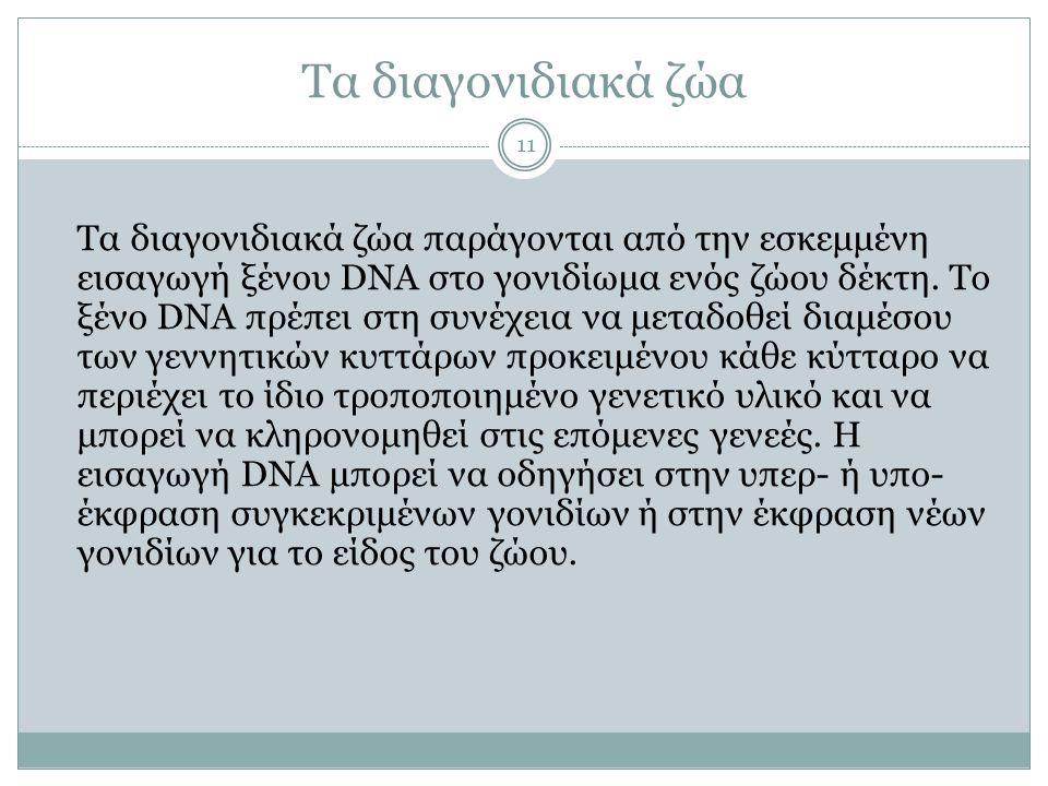 Τα διαγονιδιακά ζώα 11 Tα διαγονιδιακά ζώα παράγονται από την εσκεμμένη εισαγωγή ξένου DNA στο γονιδίωμα ενός ζώου δέκτη. Το ξένο DNA πρέπει στη συνέχ