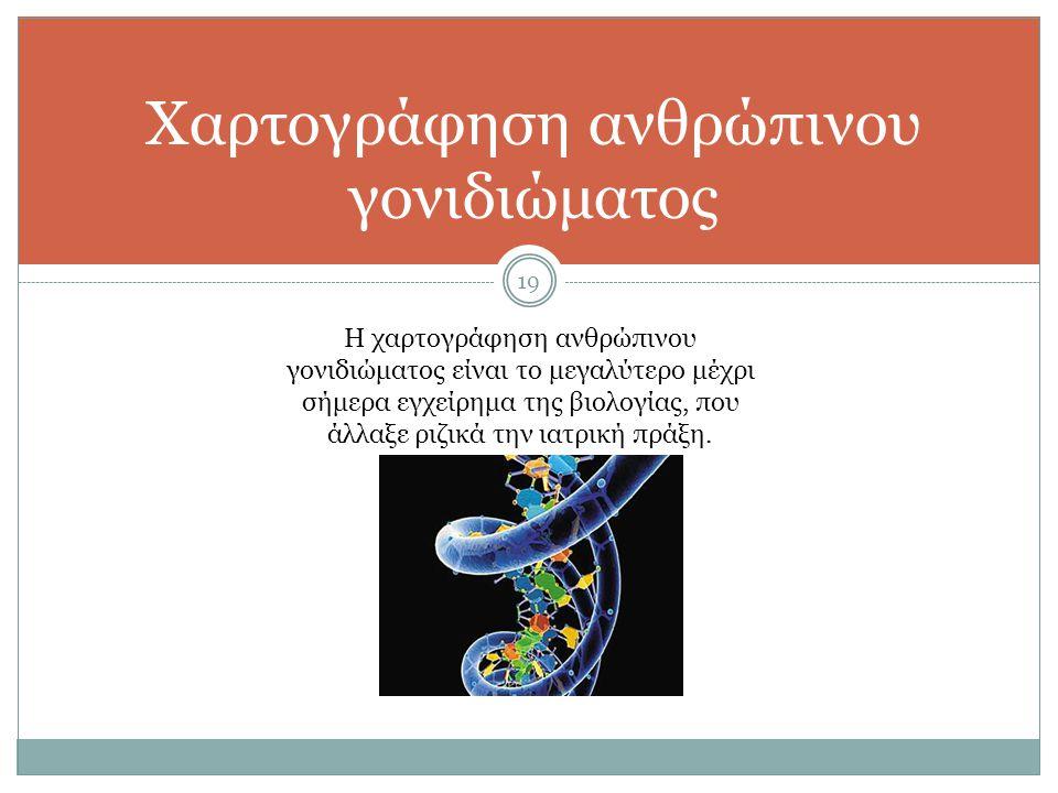 19 Χαρτογράφηση ανθρώπινου γονιδιώματος Η χαρτογράφηση ανθρώπινου γονιδιώματος είναι το μεγαλύτερο μέχρι σήμερα εγχείρημα της βιολογίας, που άλλαξε ρι