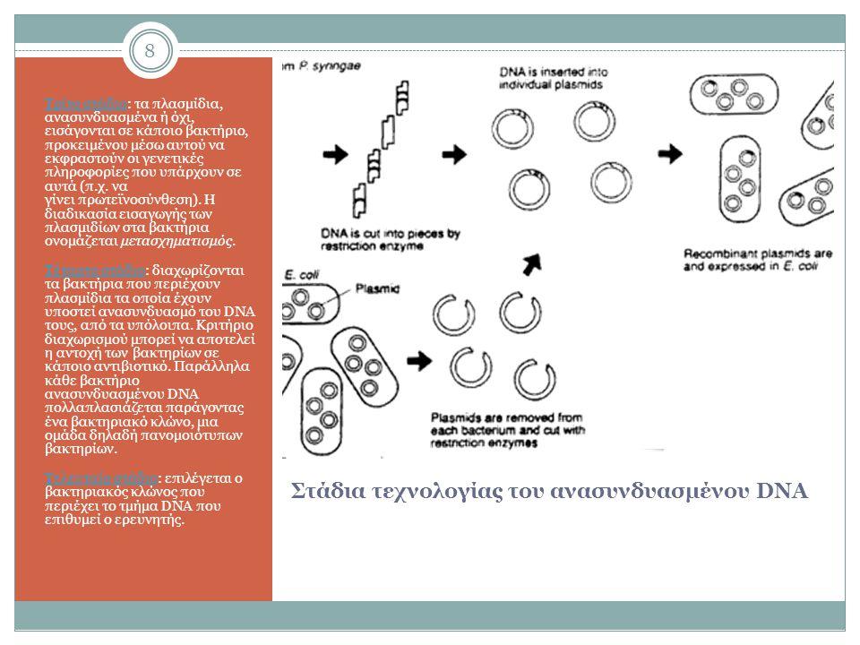 8 Στάδια τεχνολογίας του ανασυνδυασμένου DNA Τρίτο στάδιο: τα πλασμίδια, ανασυνδυασμένα ή όχι, εισάγονται σε κάποιο βακτήριο, προκειμένου μέσω αυτού να εκφραστούν οι γενετικές πληροφορίες που υπάρχουν σε αυτά (π.χ.
