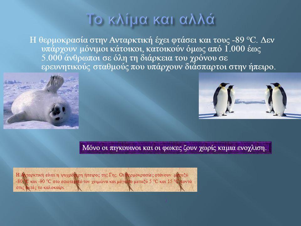 Πολλοί θεωρούν την Ανταρκτική ως έκτη ήπειρο αλλά επειδή εκεί δεν κατοικούν άνθρωποι πάρα μόνο ζώα μάλλον δεν είναι.