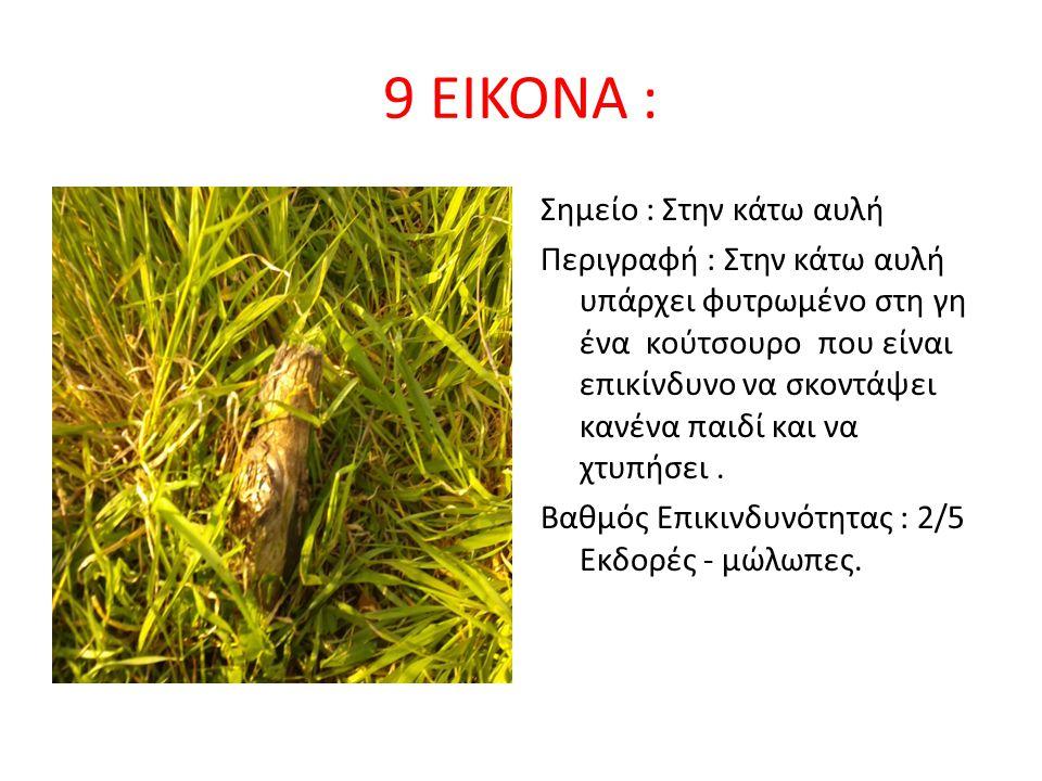 9 ΕΙΚΟΝΑ : Σημείο : Στην κάτω αυλή Περιγραφή : Στην κάτω αυλή υπάρχει φυτρωμένο στη γη ένα κούτσουρο που είναι επικίνδυνο να σκοντάψει κανένα παιδί κα