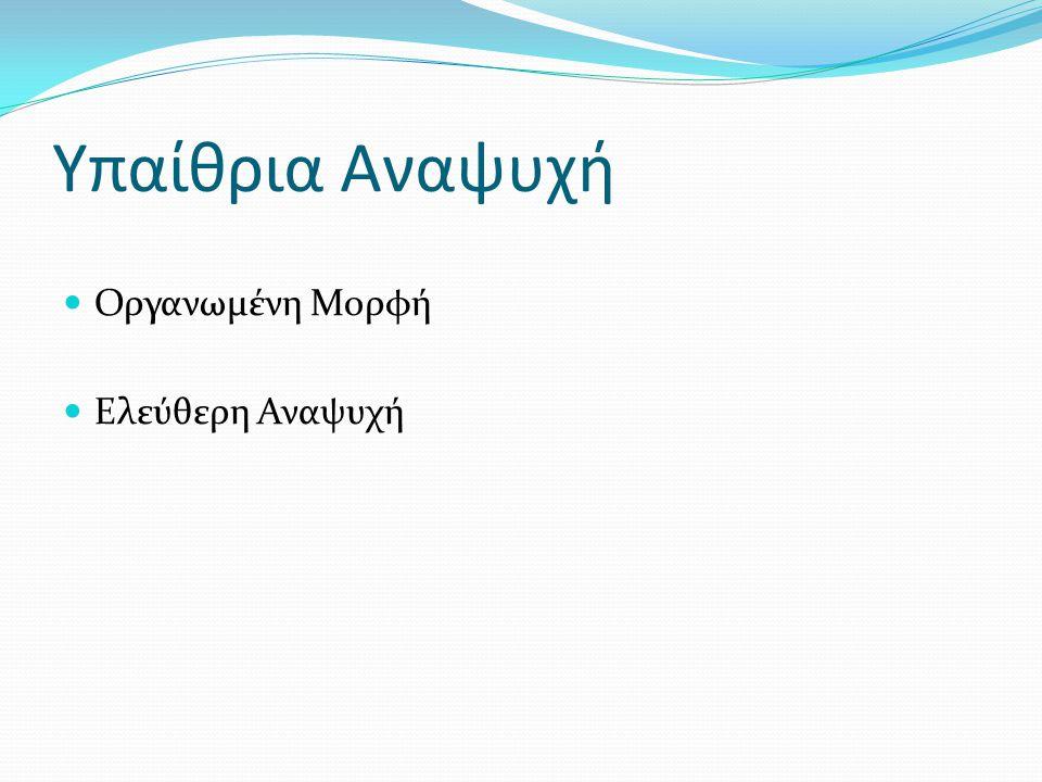 Υπαίθρια Αναψυχή - Οργανωμένη Εταιρίες Υπαιθρίων Δραστηριοτήτων Μορφή Νομικό Πλαίσιο Δραστηριότητες Αγορά Ομάδες Στόχου Παραδείγματα