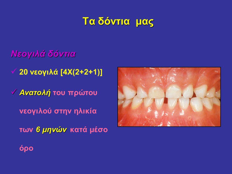 Τα δόντια μας Τα δόντια μας Νεογιλά δόντια 20 νεογιλά [4Χ(2+2+1)] Ανατολή 6 μηνών Ανατολή του πρώτου νεογιλού στην ηλικία των 6 μηνών κατά μέσο όρο