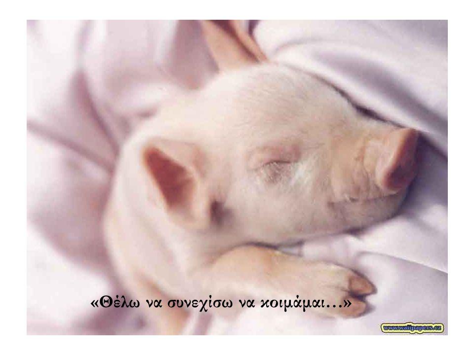 «Θέλω να συνεχίσω να κοιμάμαι…»