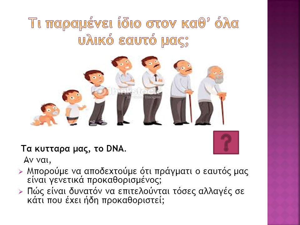 Τα κυτταρα μας, το DNΑ. Αν ναι,  Μπορούμε να αποδεχτούμε ότι πράγματι ο εαυτός μας είναι γενετικά προκαθορισμένος;  Πώς είναι δυνατόν να επιτελούντα