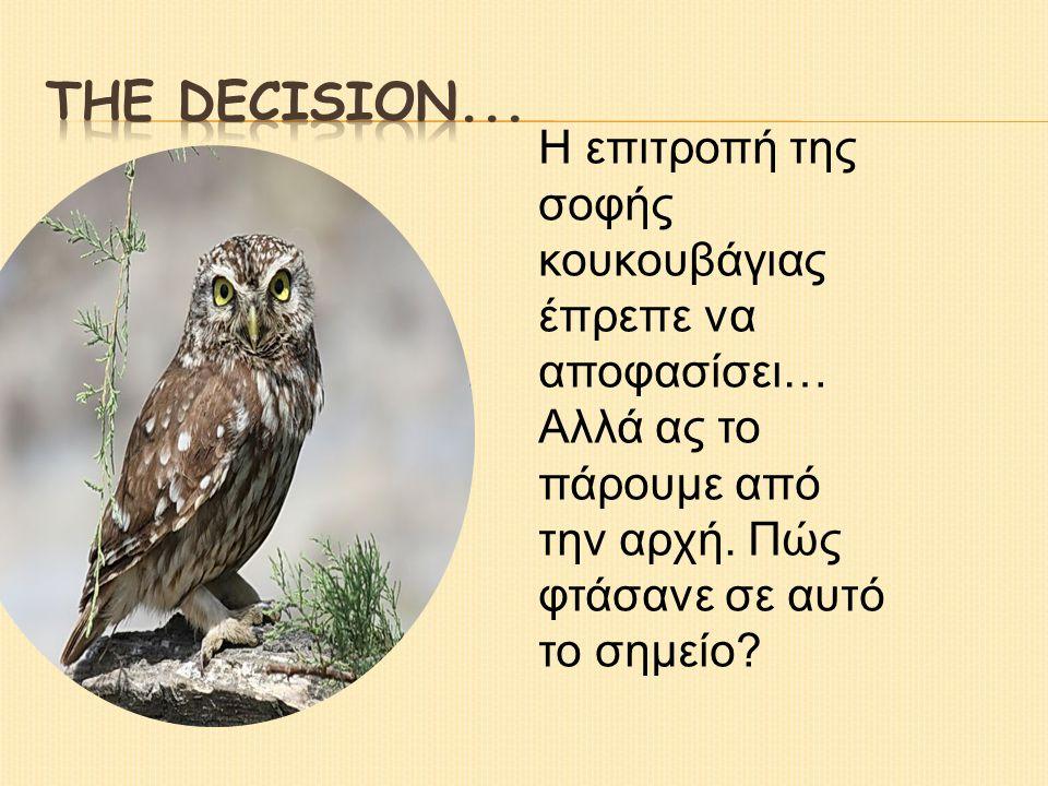 Η επιτροπή της σοφής κουκουβάγιας έπρεπε να αποφασίσει… Αλλά ας το πάρουμε από την αρχή.