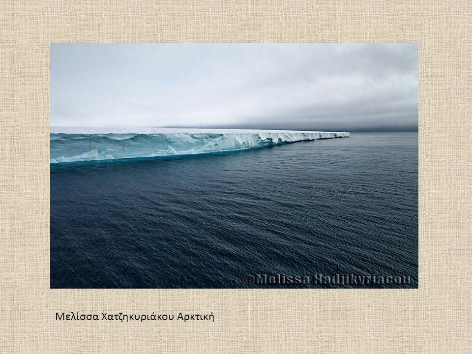 Μελίσσα Χατζηκυριάκου Αρκτική