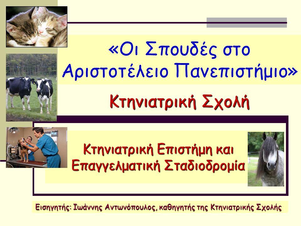 Οργάνωση της Κτηνιατρικής Σχολής Τομέας Κλινικών Μικρών και Μεγάλων Ζώων Στον 5ο Τομέα διδάσκονται τα γνωστικά αντικείμενα της κλινικής εξέτασης και διαγνωστικής, της παθολογίας των ζώων συντροφιάς, της χειρουργικής των ζώων συντροφιάς, της αναισθησιολογίας-εντατικής θεραπείας, της απεικονιστικής διαγνωστικής, της παθολογίας και χειρουργικής των παραγωγικών ζώων, της παθολογίας χοίρου, της μαιευτικής- τεχνητής σπερματέγχυσης και παθολογίας αναπαραγωγής των παραγωγικών ζώων και των ζώων συντροφιάς, της παθολογίας των πτηνών, ιχθυολογίας-ιχθυοκαλλιεργειών- ιχθυοπαθολογίας και της μελισσοκομίας-μελισσοπαθολογίας.