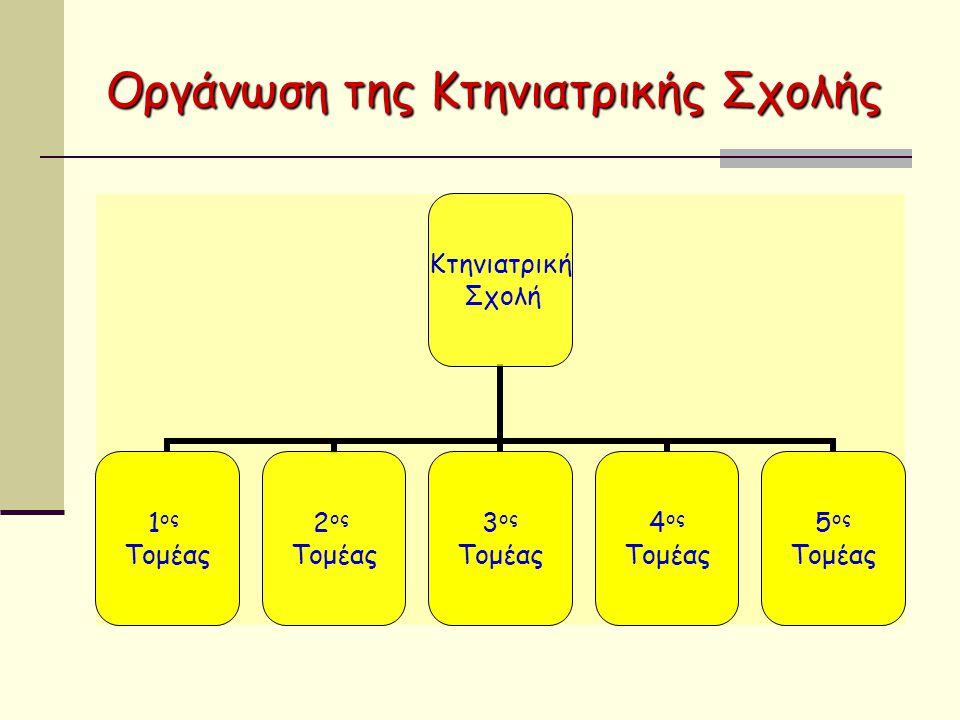 Οργάνωση της Κτηνιατρικής Σχολής Τομέας Δομής και Λειτουργίας Ζωικών Οργανισμών (1 ος Τομέας) Τομέας Ζωικής Παραγωγής, Ιχθυολογίας, Οικολογίας και Προστασίας του Περιβάλλοντος (2 ος Τομέας) Τομέας Λοιμωδών και Παρασιτικών Νοσημάτων και Παθολογικής Ανατομικής (3 ος Τομέας) Τομέας Υγιεινής και Τεχνολογίας Τροφίμων Ζωικής Προελεύσεως (4 ος Τομέας) Τομέας Κλινικών Μικρών και Μεγάλων Ζώων (5 ος Τομέας)