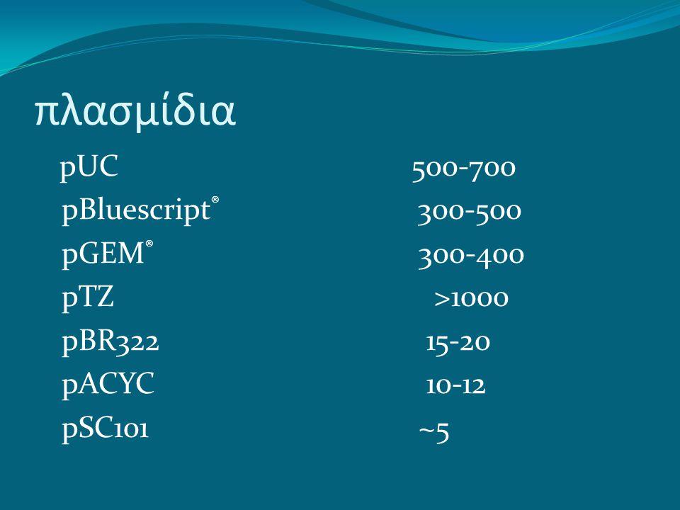 πλασμίδια pUC 500-700 pBluescript ® 300-500 pGEM ® 300-400 pTZ >1000 pBR322 15-20 pACYC 10-12 pSC101 ~5